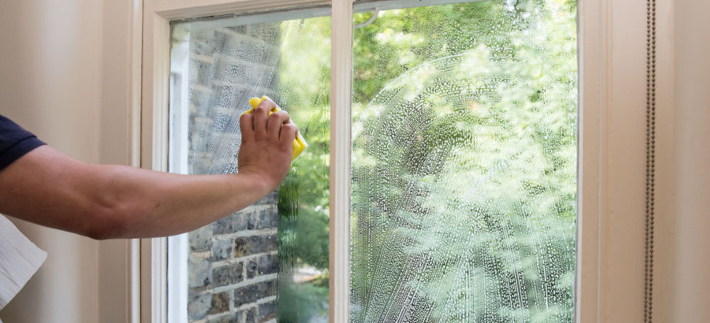 Discover What The Clean Windows Can Do For Your Business!