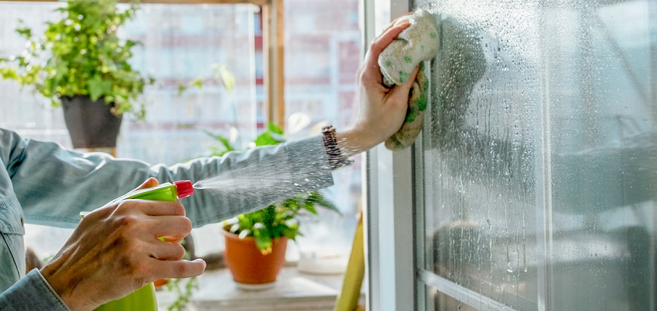 Simple Ideas To Give Your Windows The Special Shine