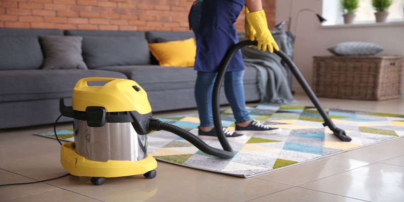 Which Bissell Model Of Carpet Cleaner Should I Buy?