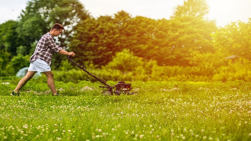 Tips To Prepare Your Lawn Properly For Summer Time