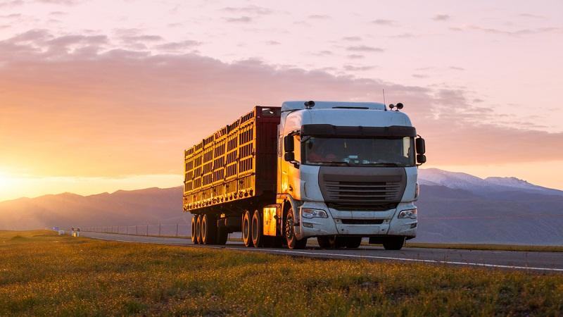 Tips to Make an Effective Brochure as a Truck Insurance Wholesaler